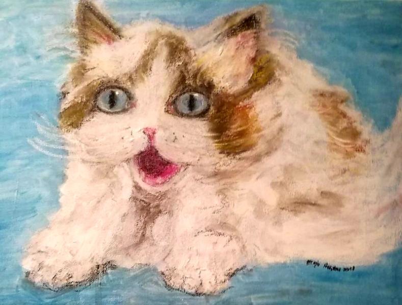 Babydoll Cat