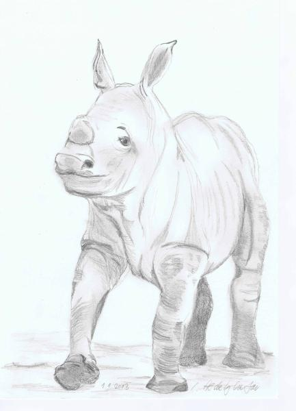 Süsses Rhinobaby