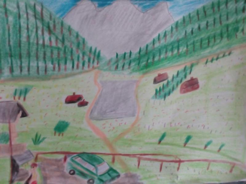 Landschaft und Natur Autos.