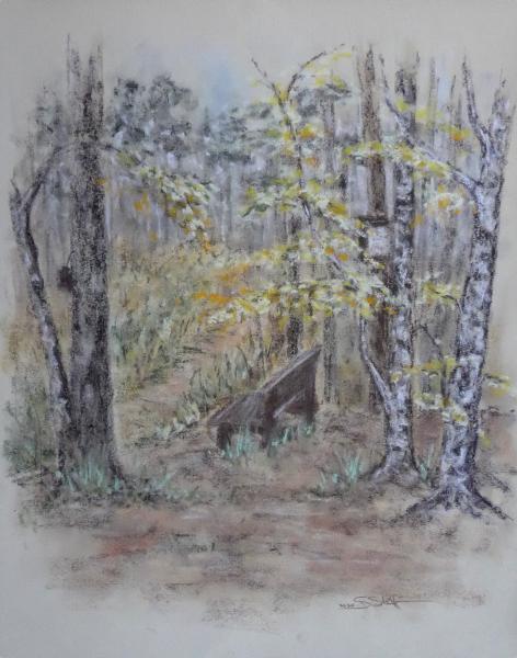 Herbstidylle im Eichelburger Wald